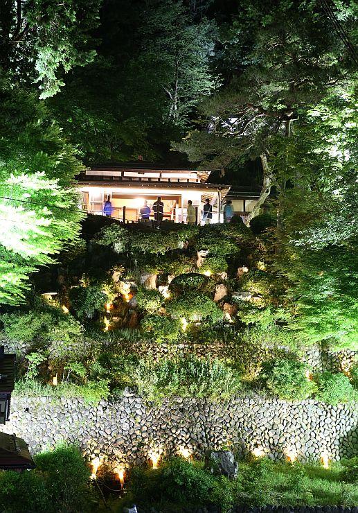 別荘や新緑が幻想的に浮かび上がった楽山苑のライトアップ=18日午後8時ごろ、長岡市与板町与板