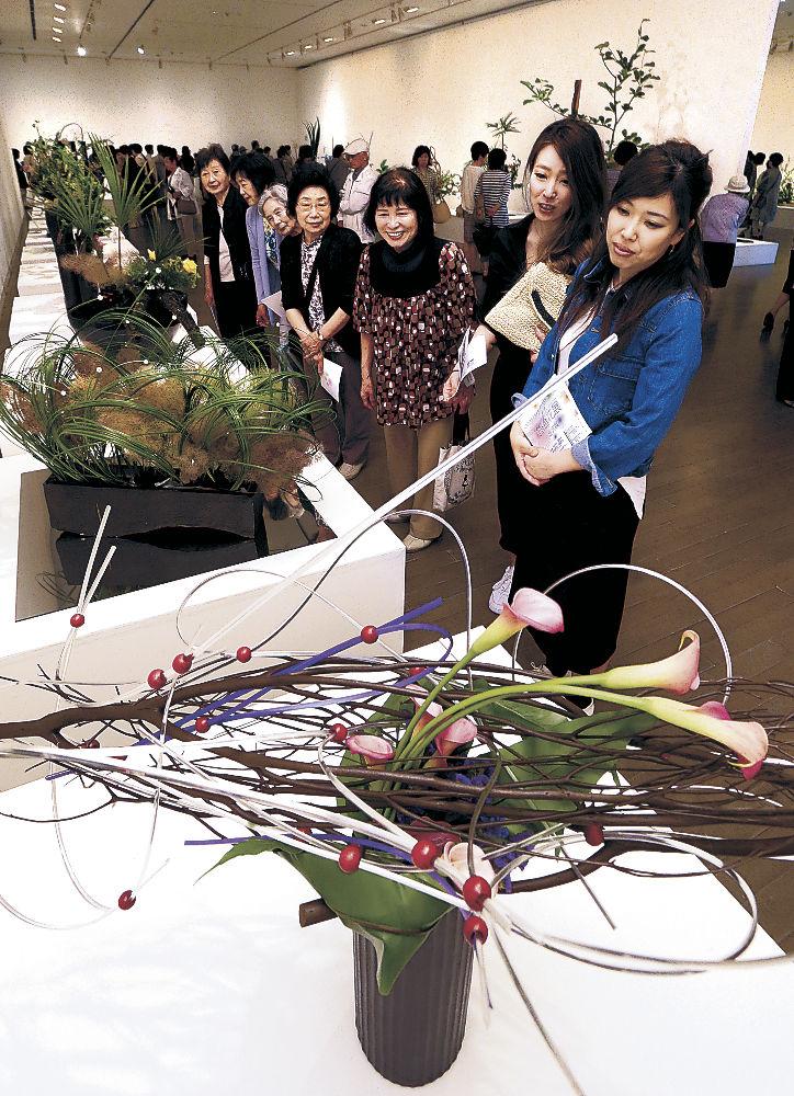 想像力を刺激する生け花作品を楽しむ来場者=金沢21世紀美術館