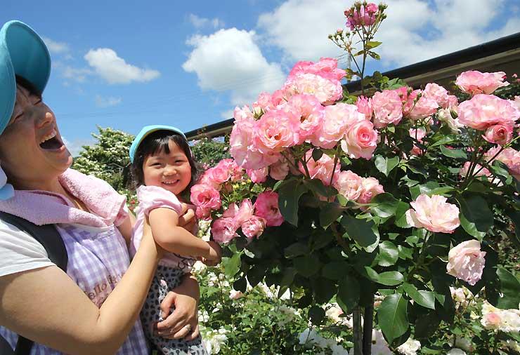 バラの花が見頃を迎えた「南信州四季彩の丘 スイートガーデン」。漂う甘い香りに、訪れた保育園児らの笑顔があふれた