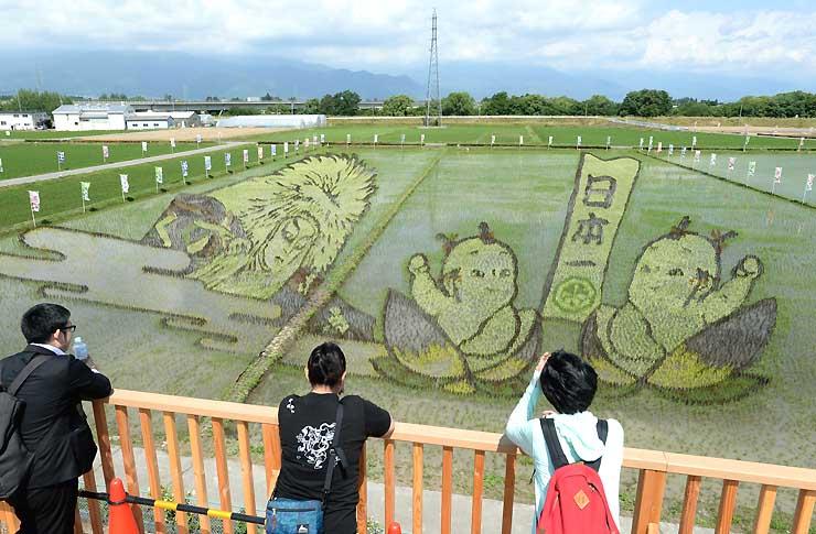 鏡獅子(左)と桃太郎の絵柄が姿を現した田んぼアート=15日、松本市島内