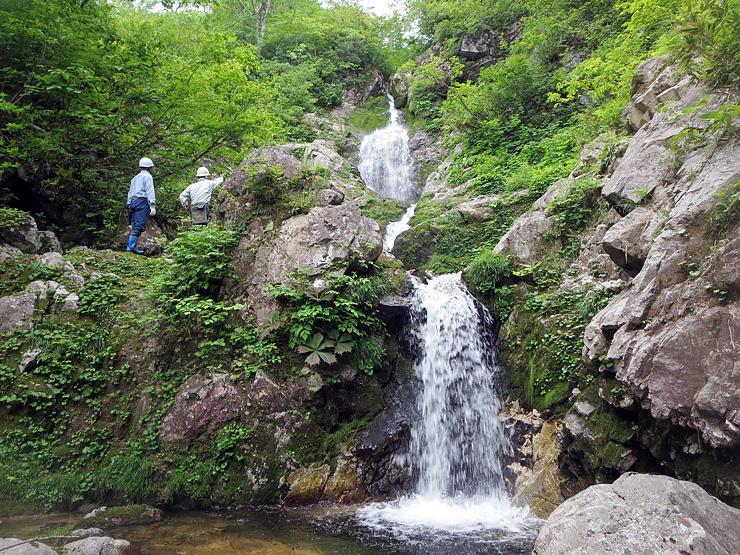 「幻の滝」への道を切り開く飛翔の会メンバーら