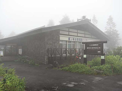 夜の霧ケ峰、ゆっくり散策 7・8月に小中学生と保護者