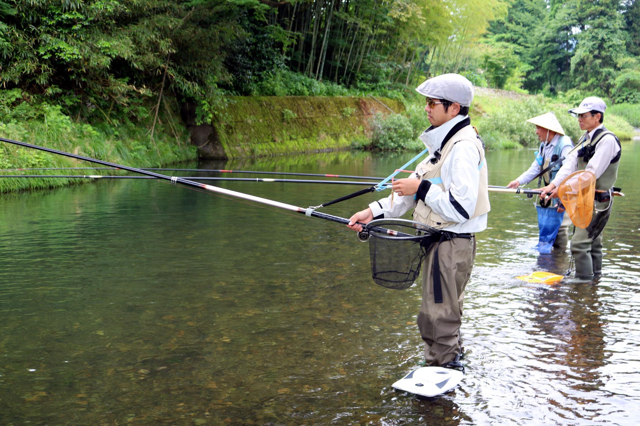 アユ釣りを楽しむ愛好者=白山市の大日川