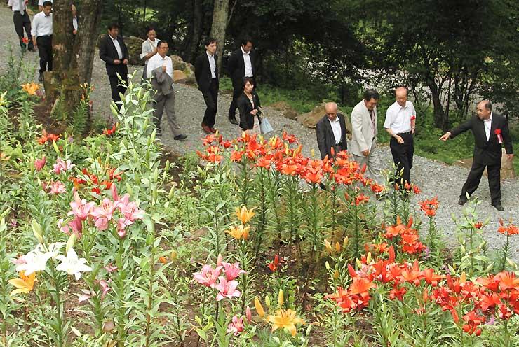 「花の里」の敷地内に咲く赤やピンクなどのユリ