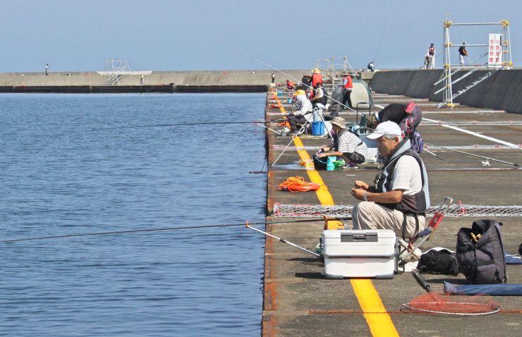 本格開放された直江津港第3東防波堤で釣りを楽しむ人々=12日、上越市