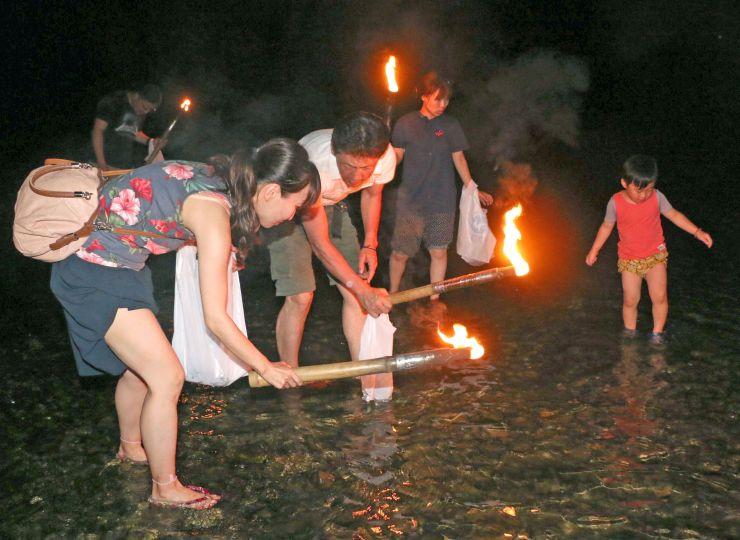 たいまつで海を照らしながらサザエを探す参加者=16日、佐渡市小木町