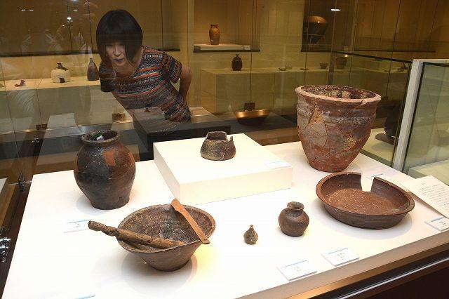 城下町から出土した多彩な産地の陶磁器=福井県越前町小曽原の県陶芸館