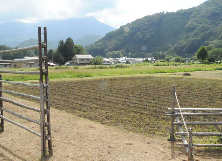 会場となる木曽町開田高原の田んぼ。左奥が御嶽山