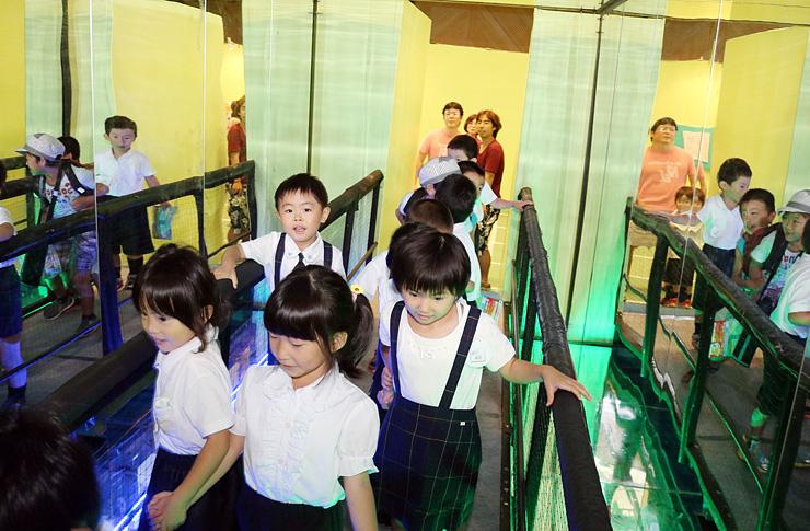 揺れていないのに揺れを感じる橋を渡る子どもたち=太閤山ランドふるさとパレス
