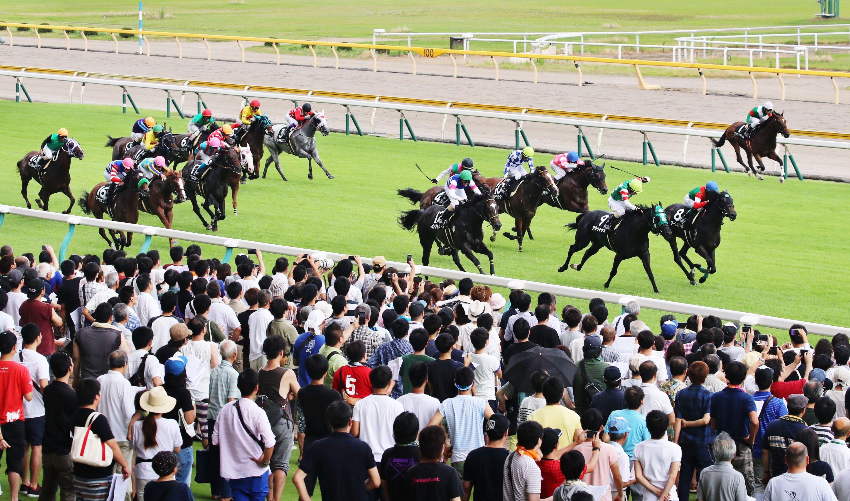 多くの観客が訪れた新潟夏競馬=30日、新潟市北区