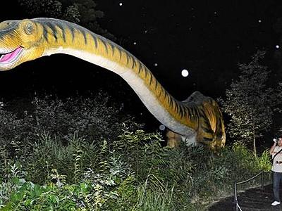 夜の森に恐竜、迫力増し「怖い!」 勝山・ディノパーク夜間営業始まる