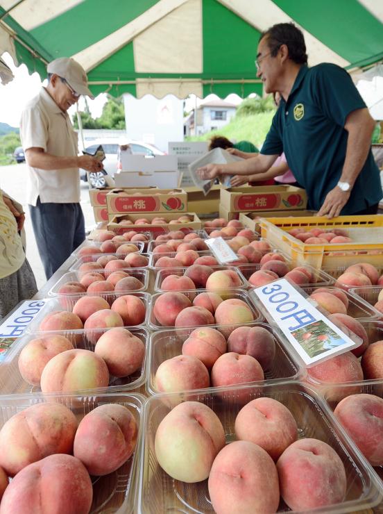 旬の桃がずらりと並んだ飯綱町の直売所