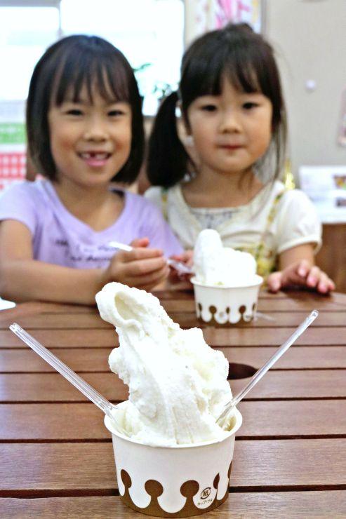 キラキラマーケットで販売しているヤギ乳を使ったジェラート=新潟市中央区清五郎