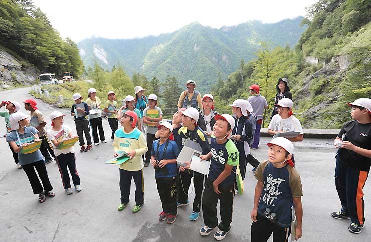 南アルプス林道沿いの地層や自然を観察する西春近南小の児童ら