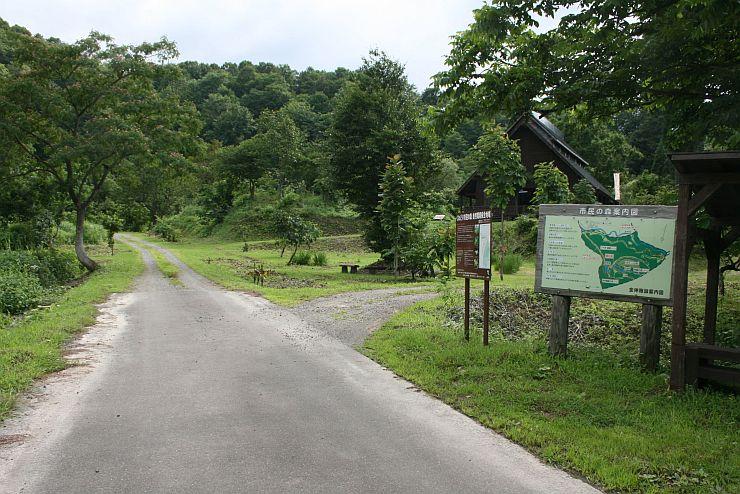 トレイルランニング大会が開かれる「くわどり市民の森」=上越市