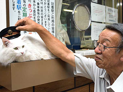 白猫駅長「ミイ」見に来てにゃ JR冠着駅でお出迎え