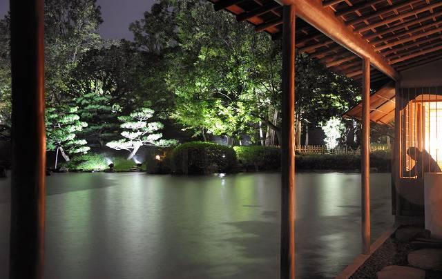 ライトアップされた木々がきれいに浮かび上がる養浩館庭園=17日午後6時半ごろ、福井市宝永3丁目