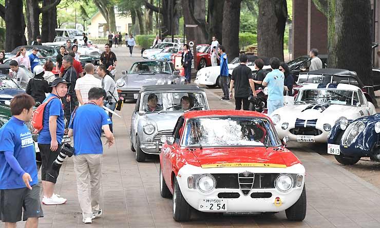 ゴール地点のあがたの森公園に集まったクラシックカー=19日午後4時すぎ、松本市