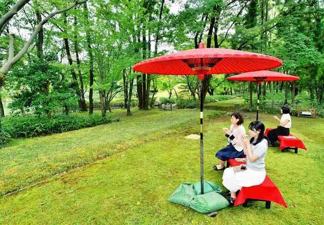 美しい庭園を眺めながらコーヒーや和菓子を味わえる「庭カフェ」=26日、福井市の養浩館庭園