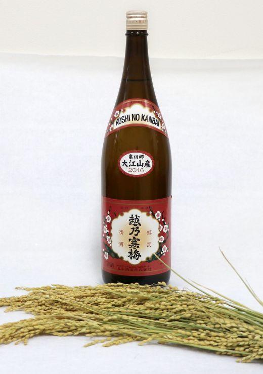 大江山地区産の酒米を使った「越乃寒梅 普通酒 大江山産」=新潟市江南区