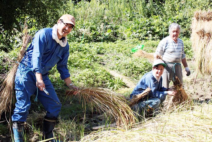 稲刈りに励む(左から)川向さん、八木さん、角間さん