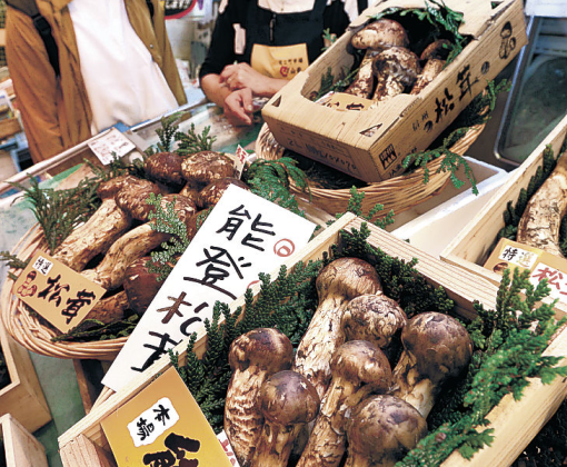 店頭に並んだ県産マツタケ=金沢市の近江町市場