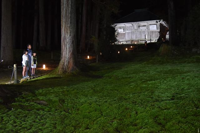ライトアップされた拝殿とコケ=30日夜、福井県勝山市の平泉寺白山神社