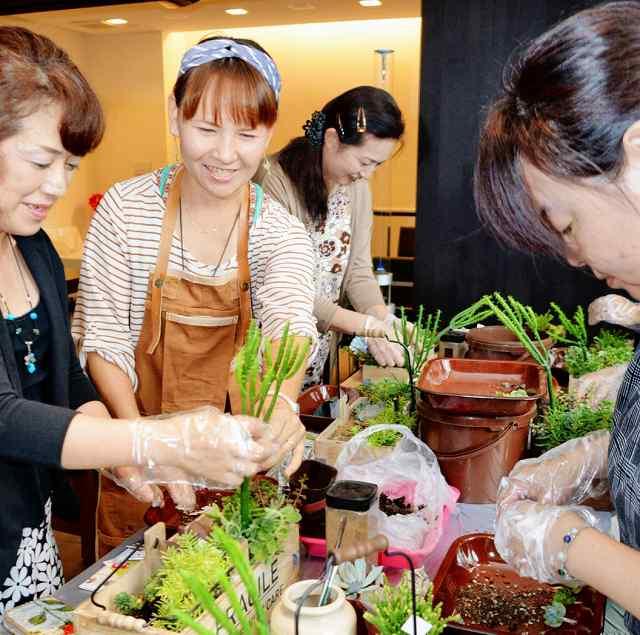 多肉植物の寄せ植えを楽しむ参加者=4日、坂井市三国町安島のmicnic