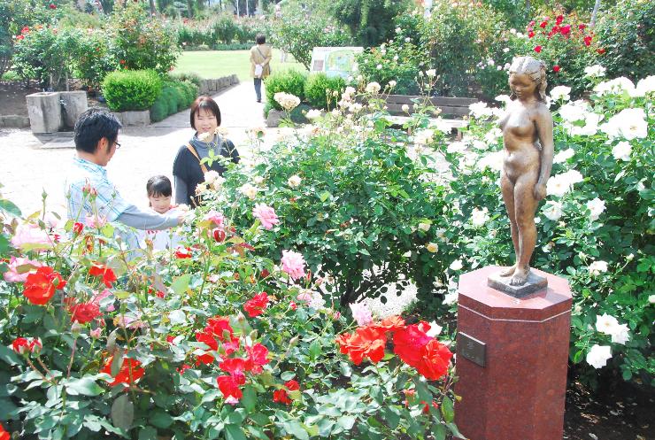 菊池一雄の彫刻を囲むように咲く色とりどりのバラ