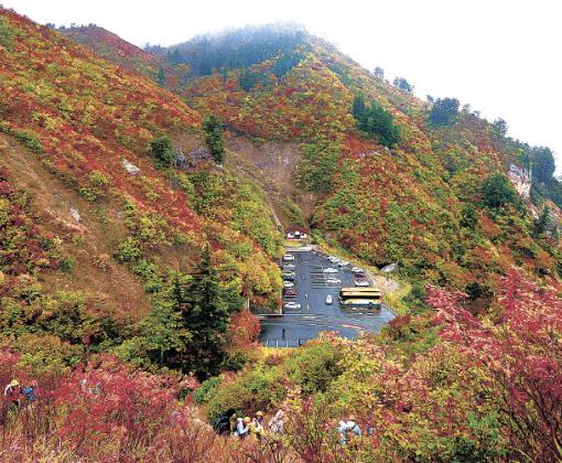 紅葉が見頃を迎えた白山白川郷ホワイトロードの三方岩駐車場付近