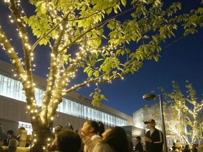 上越妙高駅 玄関口に光の彩り 住民らLED飾る