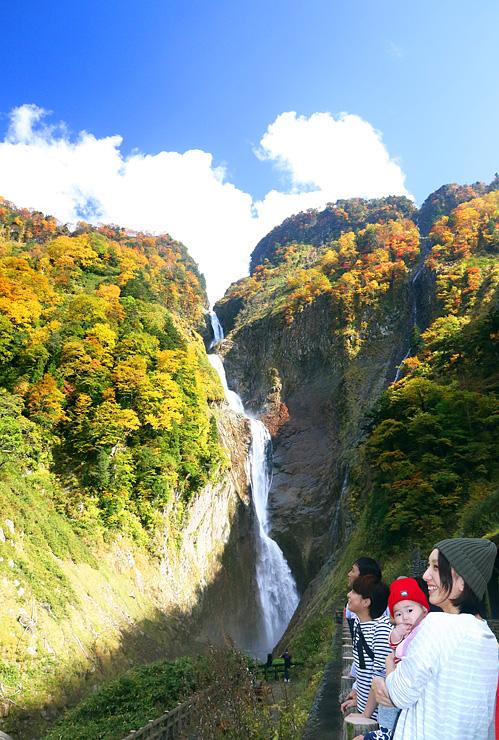 色鮮やかな紅葉で彩られた称名滝=立山町芦峅寺