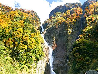 青空に映え紅葉見頃 立山・称名滝