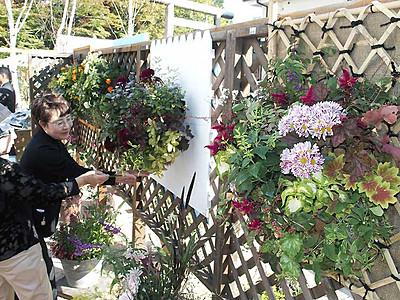 花であふれた街に 松本でコンテスト始まる