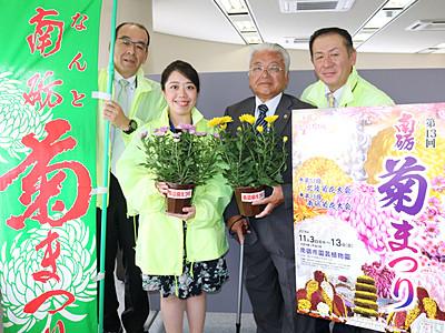 11月3日から南砺菊まつり 200種3万本展示