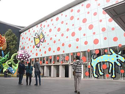 壁いっぱいに草間弥生さんの水玉 松本市美術館