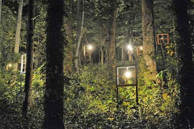 大小の木枠を窓枠に見立てた光のインスタレーション「森の灯々」=21日、あわら市金津創作の森