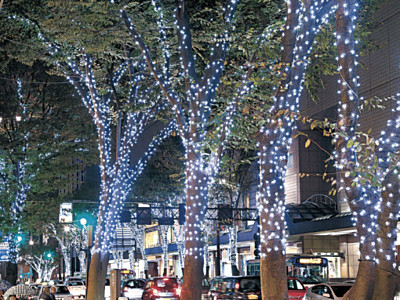 冬のきらめき、街路樹包む 香林坊、イルミネーション試験点灯