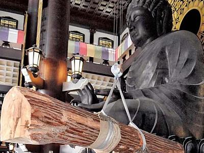 越前大仏と巨木アートが共演 彫刻家が設置、福井・勝山