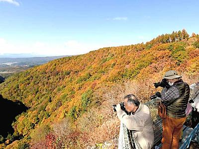 秋空に映える紅葉見頃 茅野・横谷峡