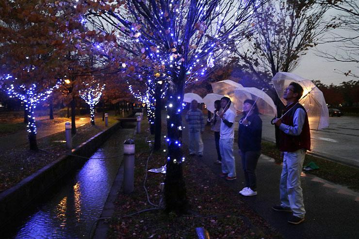 白や青色の光に彩られた会場=チューリップ四季彩館