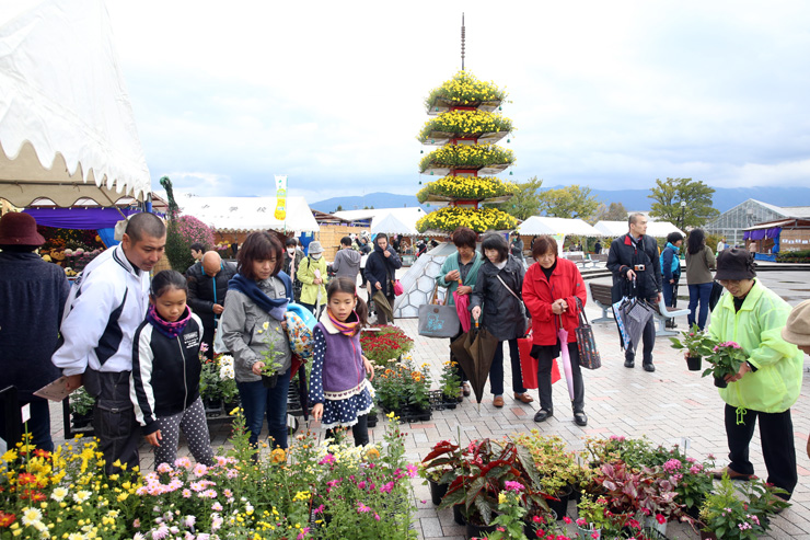 大勢の来場者でにぎわう「南砺菊まつり」の会場=南砺市園芸植物園