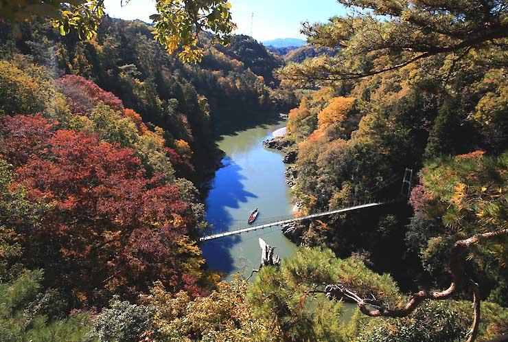 「龍角峯展望台」から望む天竜峡の紅葉。観光客らを乗せた舟は、つつじ橋をくぐってゆっくりと天竜川を下った=9日午前10時40分すぎ、飯田市
