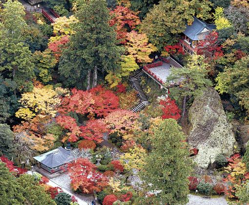 紅葉が見頃を迎えた小松市の那谷寺(北國新聞社ヘリ「あすなろ」から)