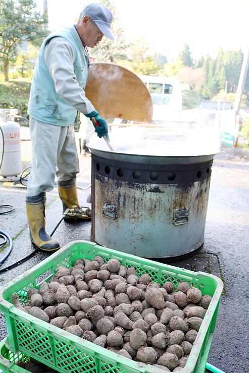 地元産のサトイモを釜でゆでる住民