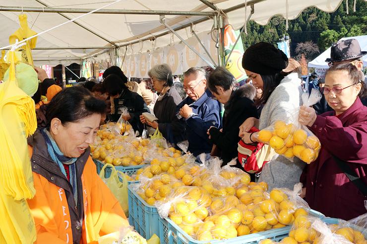大豊作のユズが並び、買い求める客でにぎわう会場=庄川水記念公園