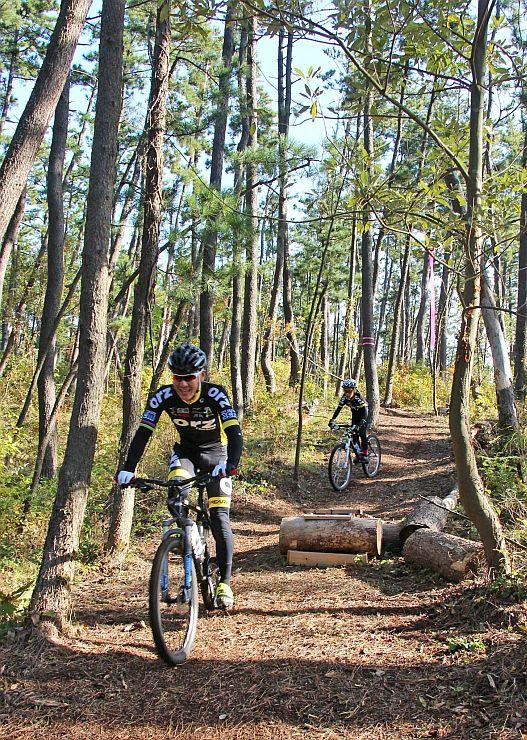保安林に整備されたトレイルコースを走る自転車愛好家=13日、新潟市西蒲区