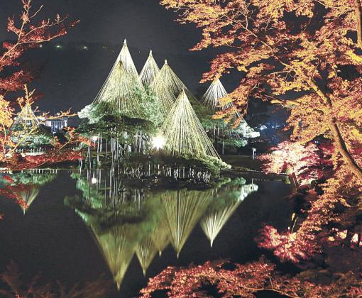 試験点灯で闇に浮かび上がった雪づりや紅葉の木々=兼六園