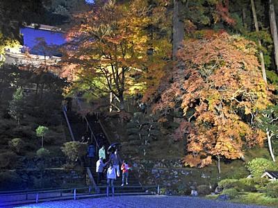 古刹と紅葉、闇に映え 福井・小浜の寺院ライトアップ