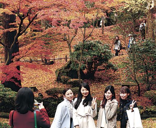 紅葉がピークを迎え、木々が色付いた山崎山周辺=兼六園